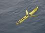 Irminger Sea Array