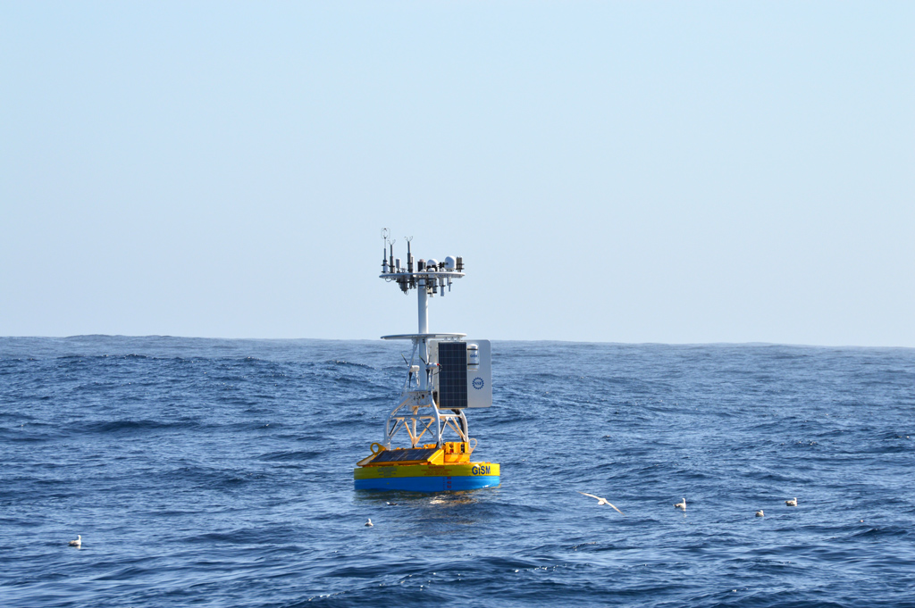 The newly deployed Irminger Sea Array Global Surface Buoy floats along the surface as seabirds investigate. The Global Surface Mooring will collect data from sensors distributed throughout the water column and transmit it back to shore via satellite. In this strongly forced ocean region, the surface meteorological and turbulent air-sea flux sensor packages will contribute much sought after information about the interaction between the atmosphere and ocean. (Photo Credit: Sheri N. White)