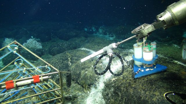 A new osmotic fluid sampler being installed in a diffuse flow site hosting a 3D temperature array in the ASHES Hydrothermal Field on the summit of Axial Seamount. Onshore analyses of the entrapped fluids provide insights on the evolution of fluid chemistry in time, in response to changing environmental conditions e.g. earthquakes, temperature, microbial utilization of gases and different elements. Credit: UW/NSF-OOI/WHOI; V16.