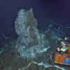 The HD camera (orange triangular frame) images the 14 ft-tall actively venting hot spring deposit 'Mushroom' located within the caldera for Axial Seamount. The vent rests on an old lava flow. Radiating cracks in the  flow are filled with white bacterial mats and small tube worms, marking sites of diffusely flowing fluids that issue from the fractures in the basalt. The 3-D temperature array in the background encloses a tube worm bush, sending 24 temperature measurements live to shore every second. Photo Credit: NSF-OOI/UW/CSSF; Dive R1730; V14