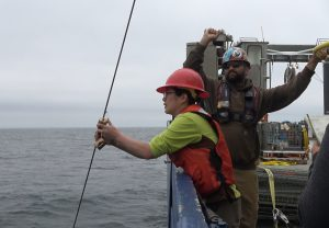 """Dropping the """"messenger"""" down on a wire to close a zooplankton sampling net. Credit: Romina Centurion/UW"""