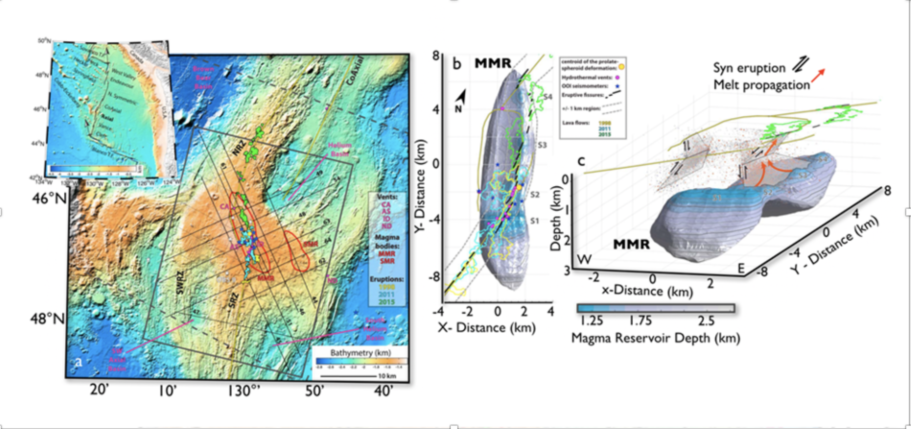 Axial Seamount Roots